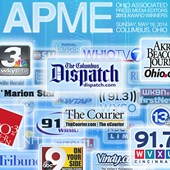 Logos: APME 2013 Award Winners