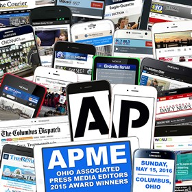 Logos: APME 2015 Award Winners